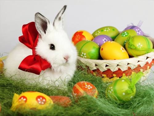 Pakiet Wielkanoc Teodorka Ciechocinek